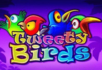 Tweety Birds van Amatic